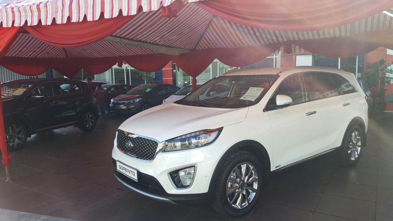 Launching All new Kia Sportage & Sorento